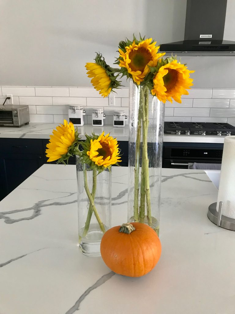 Living Frenchly Sunflowers